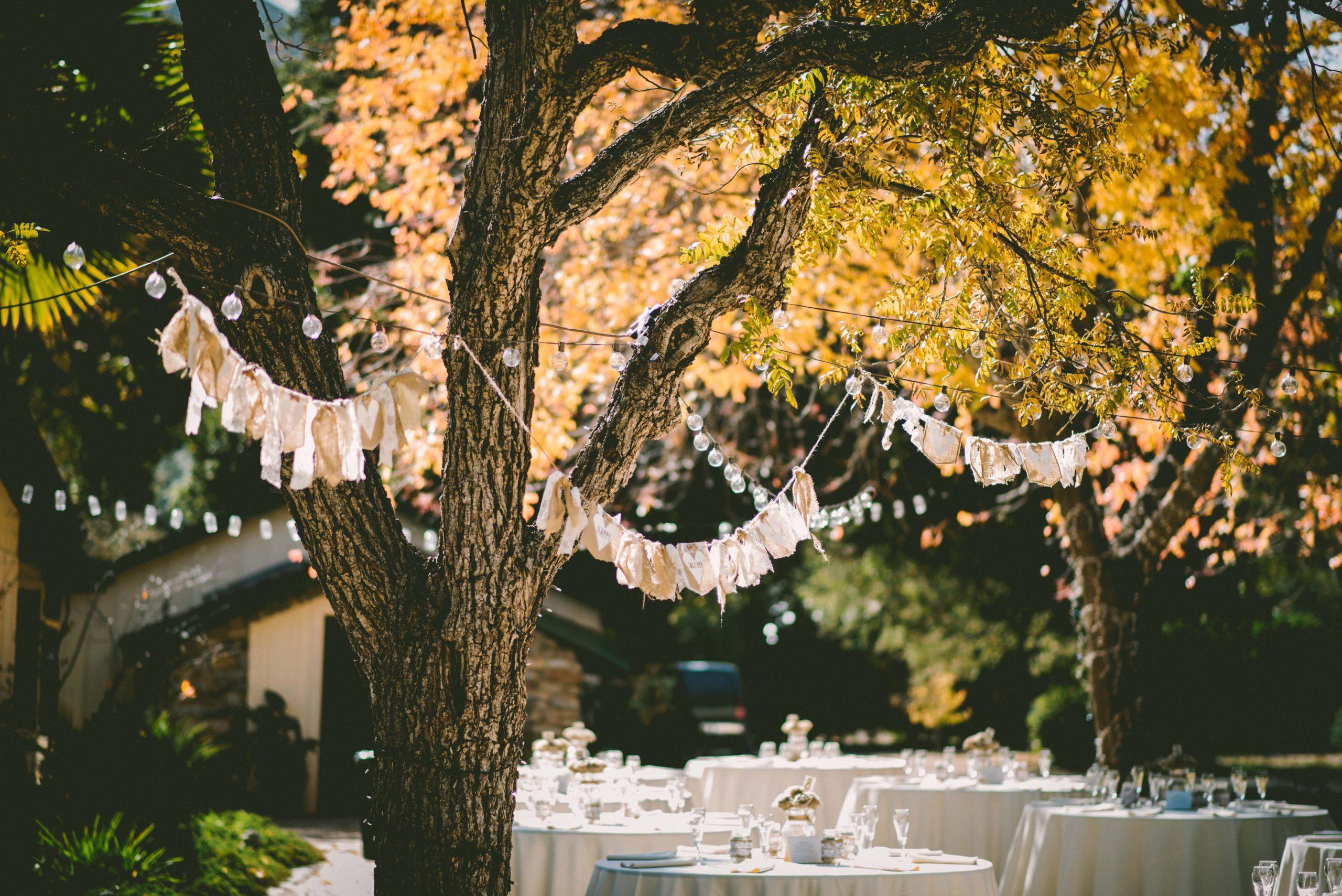 How To Organize A Backyard Wedding